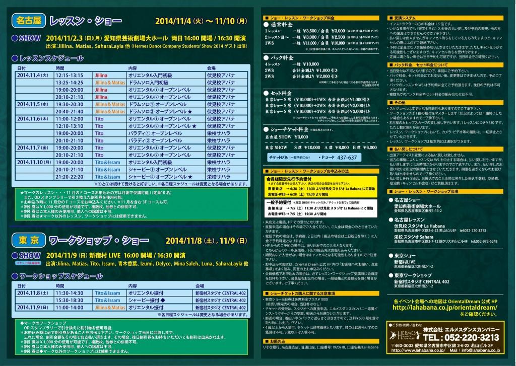 ODV8チラシP.2.3